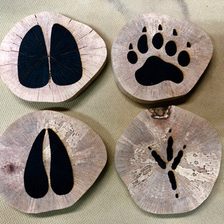 Florida Wildlife Coasters made from Spalted Oak