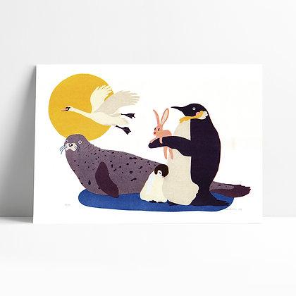 Tučniak - Ové Pictures, risografika