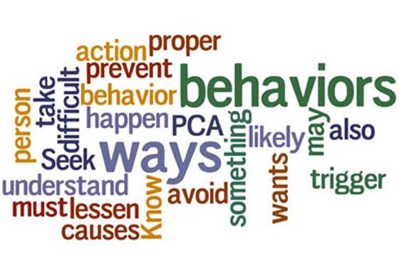 behaviors-6165.jpg