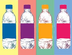 Water Bottles for Warhol