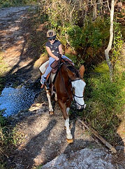 Youth Trail Rides