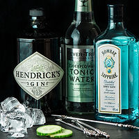 Gin-and-Tonic-4.jpg