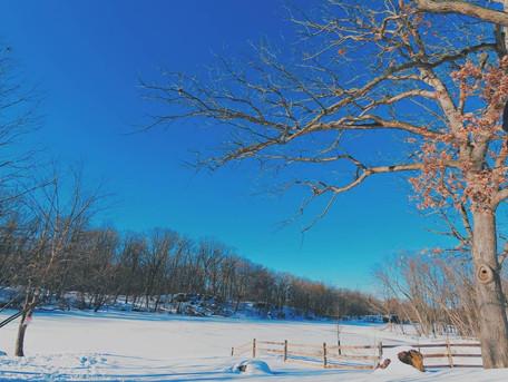 Barbour Pond, frozen