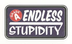 Endless Stupidity 2016