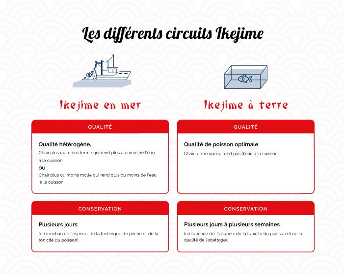 Comparatifs des avantages des différentes techniques d'ikejime : à bord du bateau ou à terre.