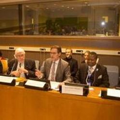 IPP co-hosts an Annual Side Event at the United Nations.  This is a photo of Hans Hallundbaek, Direc