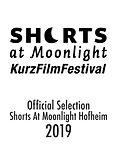Shorts-at-moonlight-smart-klein.jpg