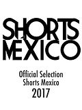Mexico-smart-klein.jpg