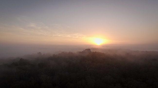 selva-maya-5.jpg
