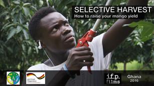 Selective Harvest