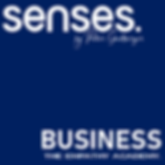 logo_senses_bluebox_schrift.png