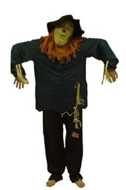 Scarecrow- Wizard of Oz