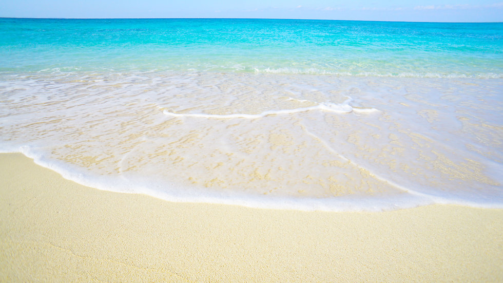 ocean01.jpg