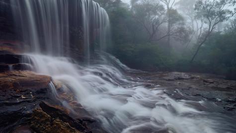Roar, Blue Mountains National Park, NSW