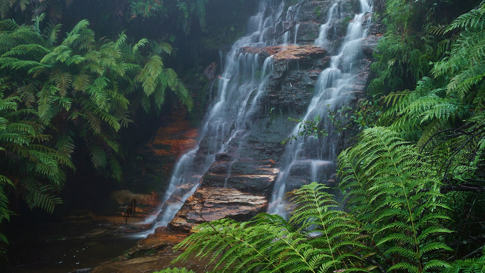 Ferny Cascade, Blue Mountains National Park, NSW