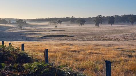 Coastal Farmland, Wapengo NSW