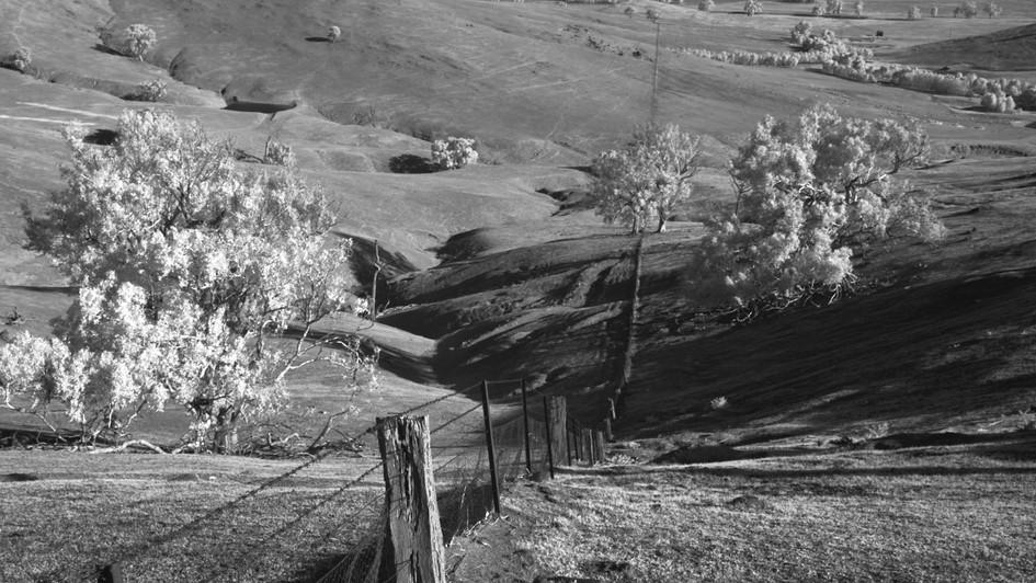 Fence, Kimo Estate, NSW