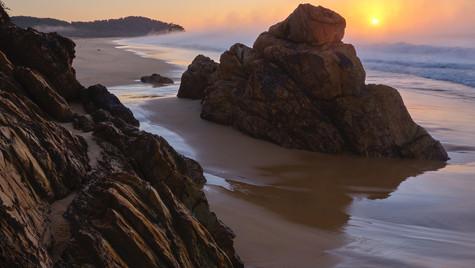 Primeval, Mimosa Rock National Park NSW