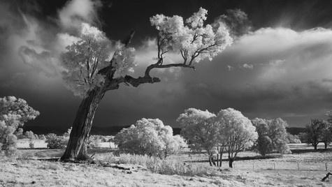 Approaching Storm, Mudgee NSW