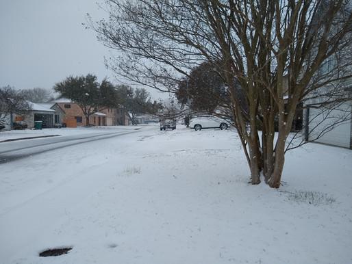 The Snow Diaries: Living Through the Texas Snowmageddon