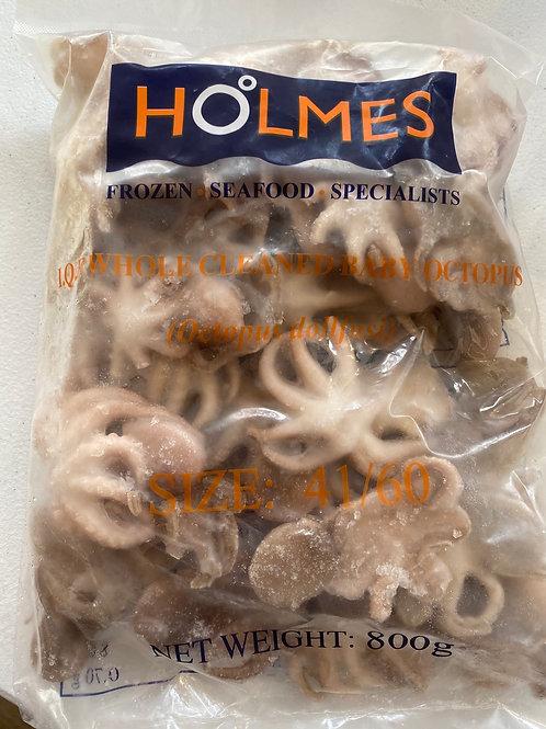 HOLEMS Baby Octopus 小章鱼