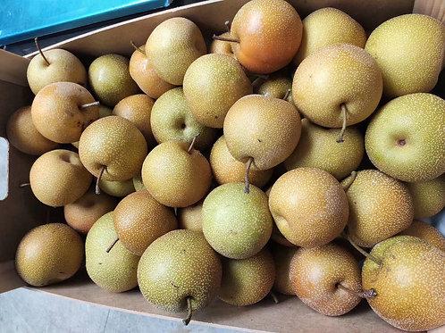 Sugar Pear 砂糖梨 4Pcs