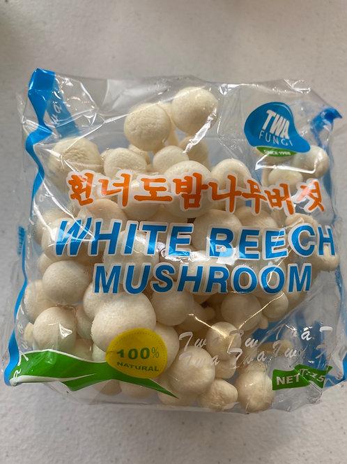 White Beech Mushroom
