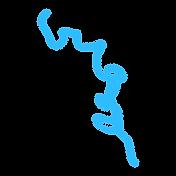 La Seille (Saône-et-Loire), Louhans