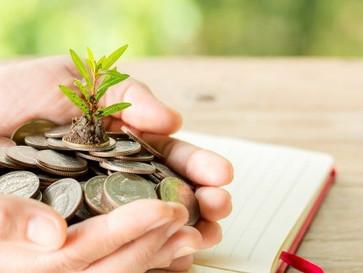 Sostenibilidad: una sabia decisión para el futuro financiero de cualquier organización