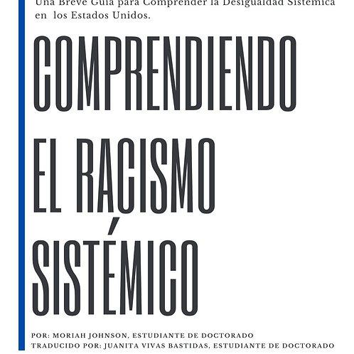 Comprendiendo el Racismo Sistémico