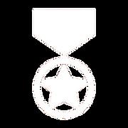 award-7d1f8b227c12c3090d4096da1fa3d680c4