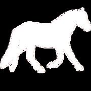 horse-0acb846f14d1317a4241bd3f82668ac246