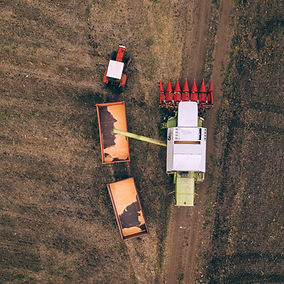 aerial-view-of-combine-pouring-harvested