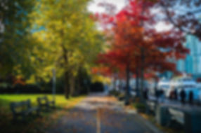 Leica - Vancouver-3.jpg