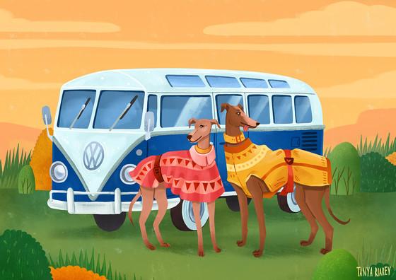 campervan-dogs.jpg