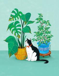 moody-cat1.jpg