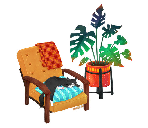 cat-on-sofa2.jpg