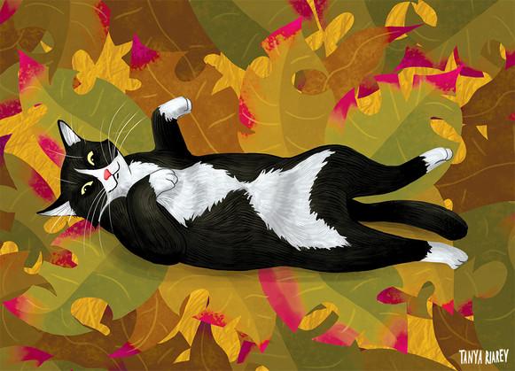 Autumn-cat01.jpg