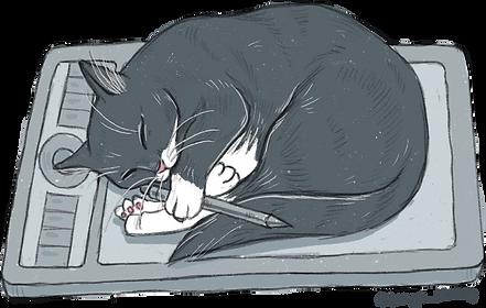 Luna_the_cat.png