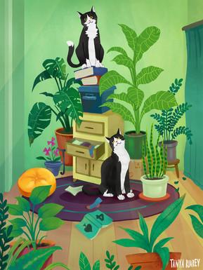 cats-cats-cats.jpg