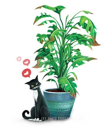 cat-on-plant.jpg