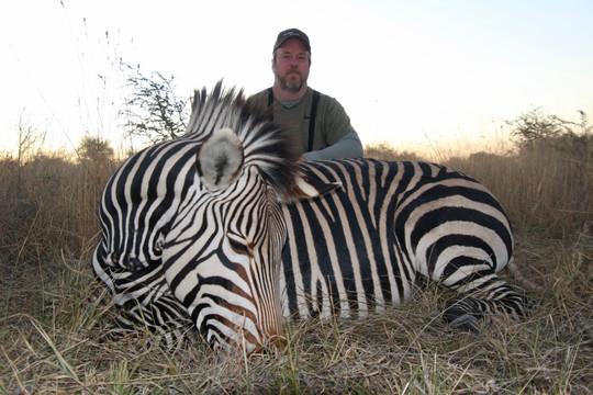 Hartmann Zebra Hunted in Namibia with Zana Botes Safari