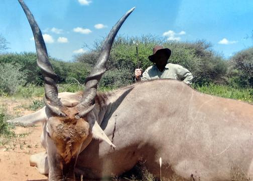 Eland Hunting in Namibia with Zana Botes Safari