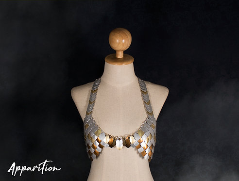 Lady Guinevere Scalemaille Bra