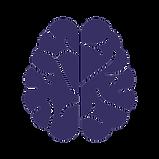noun_Brain_962496_373063.png