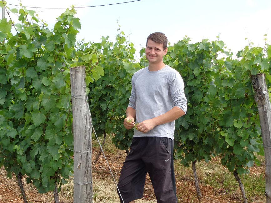 duperray in vines.jpeg