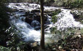 Coker Creek Falls.jpeg