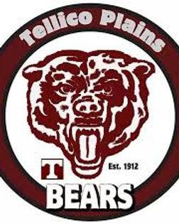 TPHS logo.jpeg