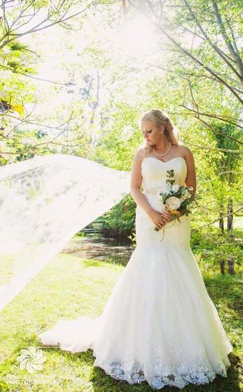 Amy's Garden Picked White Roses