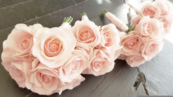Coral Half Open Roses